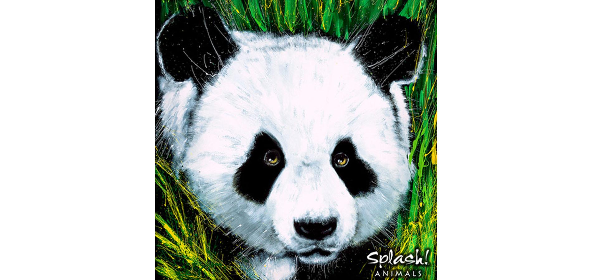 Endangered Animals with Splash! Animals - Panda (Grades 3-7)
