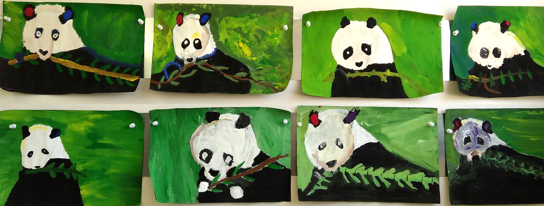 Wildlife & Other Projects (Grades K-2/3)