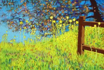 Los Jilgueros Spring
