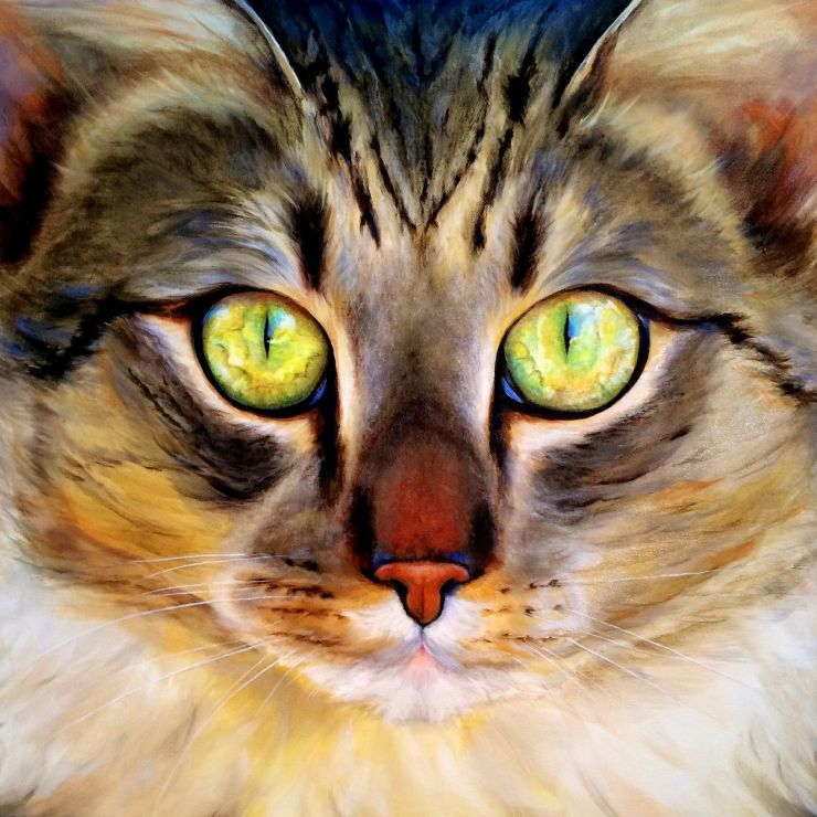 Cindy  Jones profile picture
