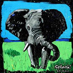 Adult Endangered Animals with Splash! Animals - Elephant
