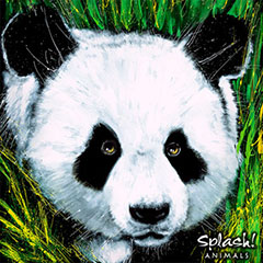 Endangered Animals with Splash! Animals - Panda (Grades 3-7)