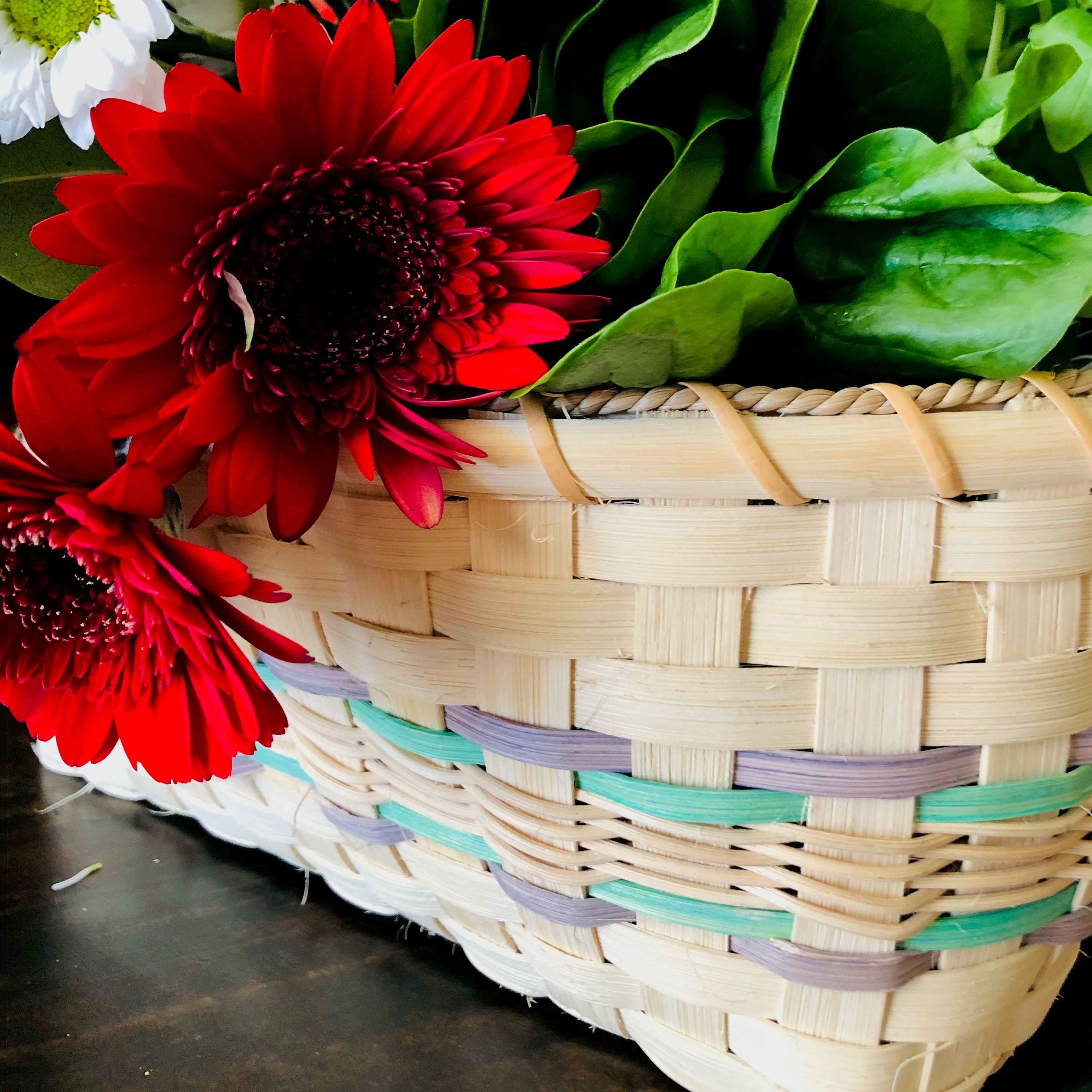 Intro to Basketry